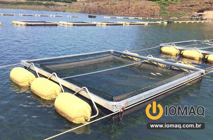 Cria o de peixe em tanque rede not cias sobre telas de for Manual de piscicultura tilapia